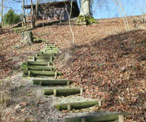 samr steps