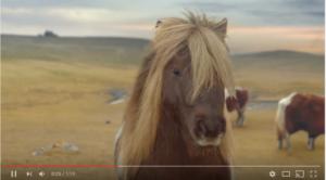 dance pony mashup